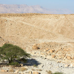 ArkImages.com - Shawn Benjamin Photography | Mountains, Israel