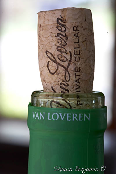 ArkImages.com – Shawn Benjamin Photography | Van Loveren Wine