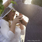 ArkImages.com - Shawn Benjamin Photography | Cape Town Wedding, Suikerbossie