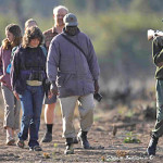 ArkImages.com – Shawn Benjamin Photography | Safari Walk, Zambia