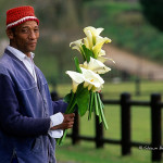 ArkImages.com - Shawn Benjamin Photography | Flower Man, South Africa