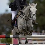 ArkImages.com - Shawn Benjamin Photography | Horse Show Jumping
