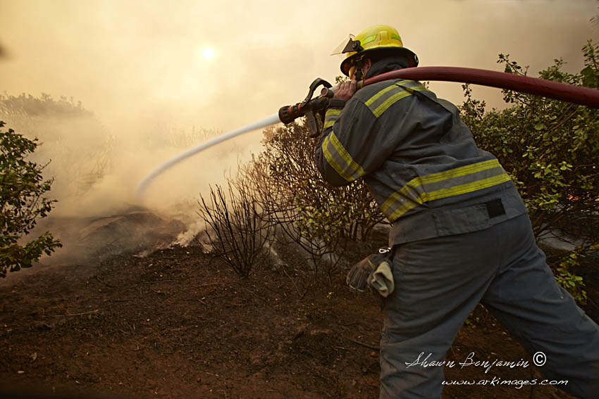 ArkImages.com - Shawn Benjamin Photography | Zwaanswyk| Fire |