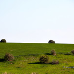 ArkImages.com - Shawn Benjamin Photography | Country Side, Israel