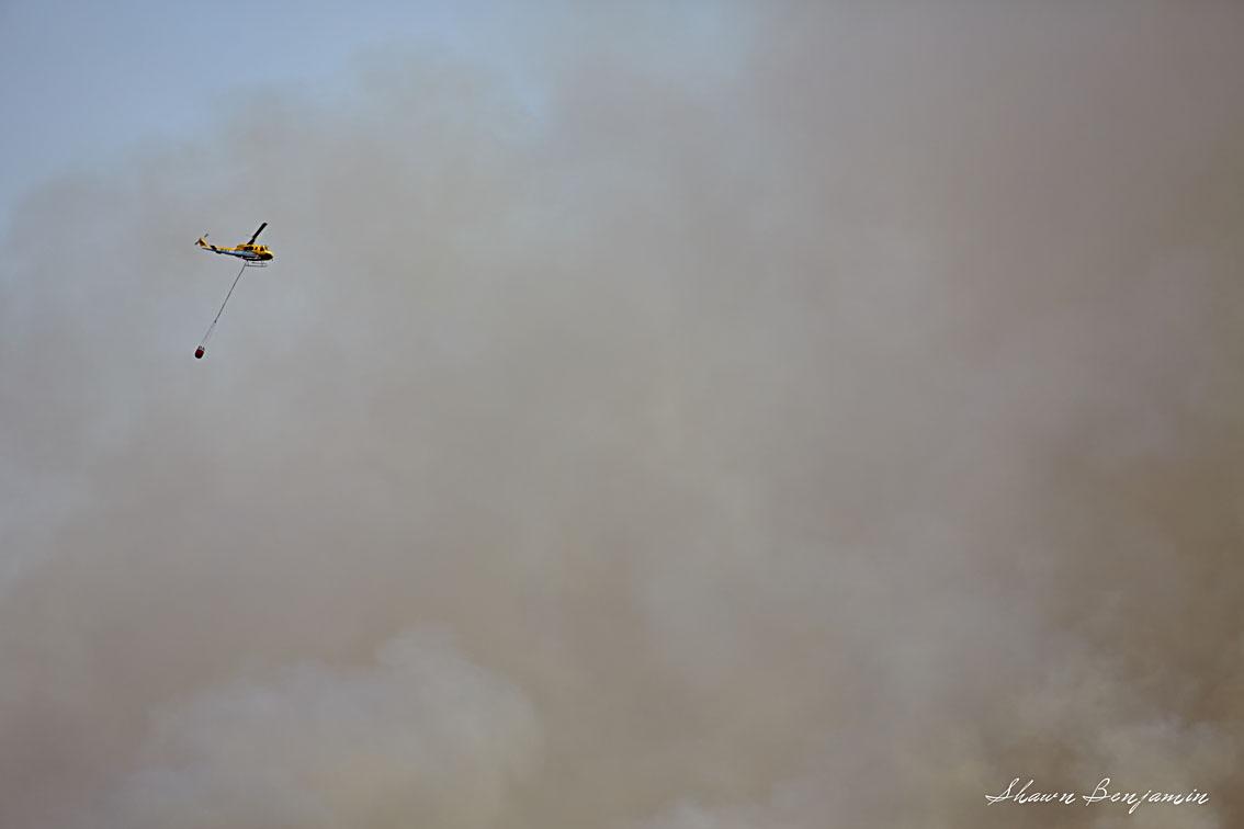 ArkImages.com - Shawn Benjamin Photography   Tokai   Fire  